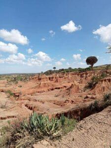View in Kenya